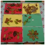 Our beautiful Autumn leaf collages