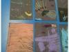 Chalk Firework Pictures