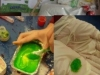 Science Week - Slime Putty