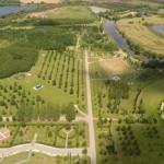 alrewas arboretum