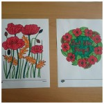 look at these lovely poppy pictures