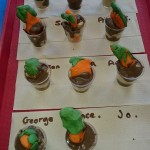 We made our own edible carrot pots, they were tasty