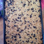 and our delicious raisin flapjack