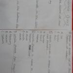 Had a science quiz